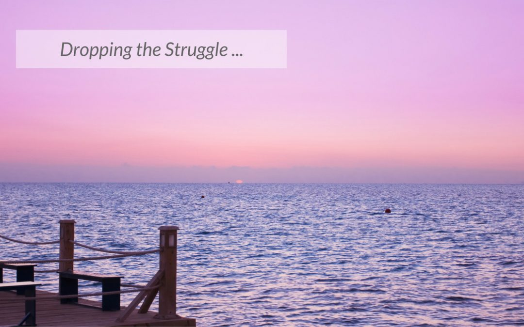 Dropping the Struggle …