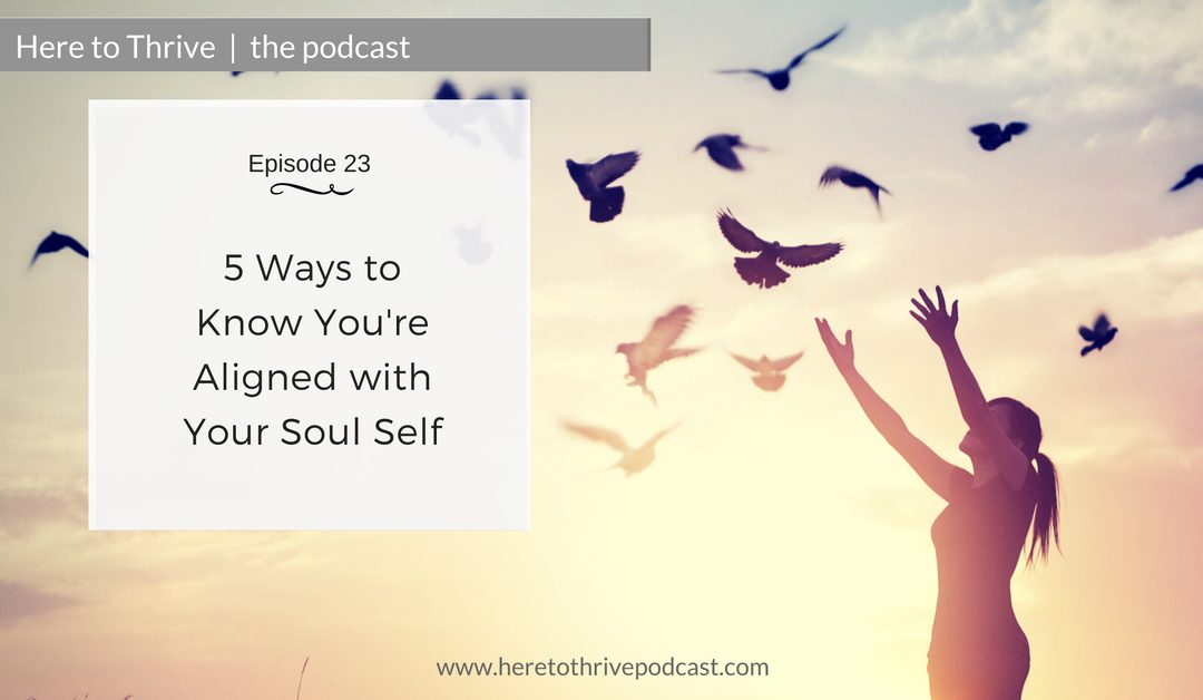 #23: 5 Ways to Know You're Aligned with Your Soul Self